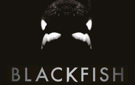 Blackfish: A Review